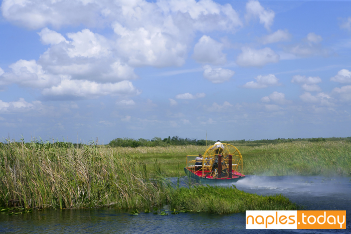 Airboat in Big Cypress National Preserve