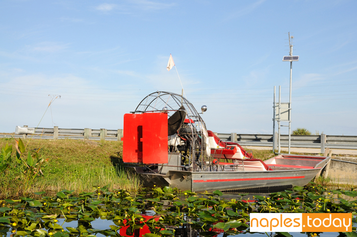 Airboat in Everglades National Park