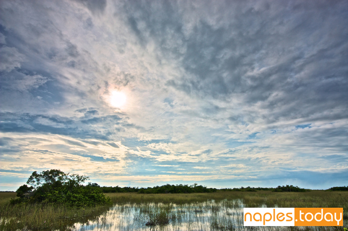 Beautiful Everglades National Park landscape