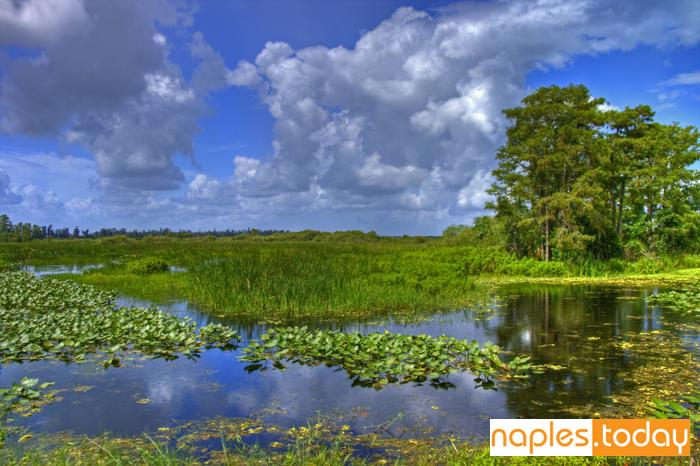 Cloudscape landscape in Everglades National Park