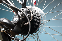 Bicycle sales repair and rental in Naples