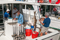 Group of recreational fishermen on a boat
