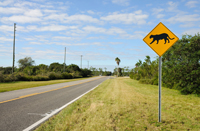 Sign warning of Florida panther habitat
