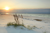 Sunrise on white sand of Barefoot beach