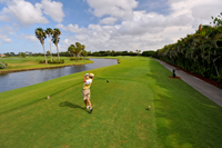 Teeing off in beautiful Naples Florida