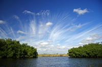 Turner River in Big Cypress National Preserve