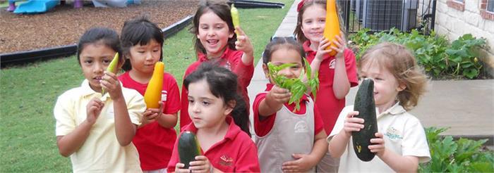 Cypress Creek Chidren's Montessori School in Naples