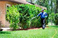 Catseye offers you a complete solution for home and outdoor services from pest and wildlife control to lawn care and landscaping.